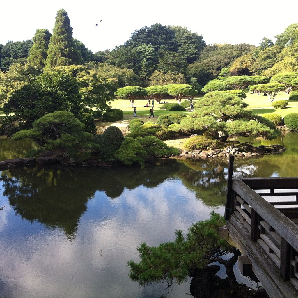 things to do instead of college japan travel