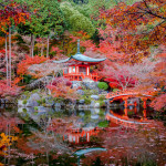 See The World On Your Lunch Break – JAPAN